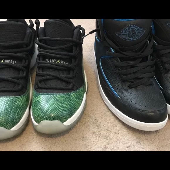 premium selection f8350 373ee Snake skin 11 and jordan retro 2s